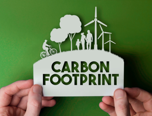 "What ""Carbon Footprint"" Means and How We Can Make It Smaller"